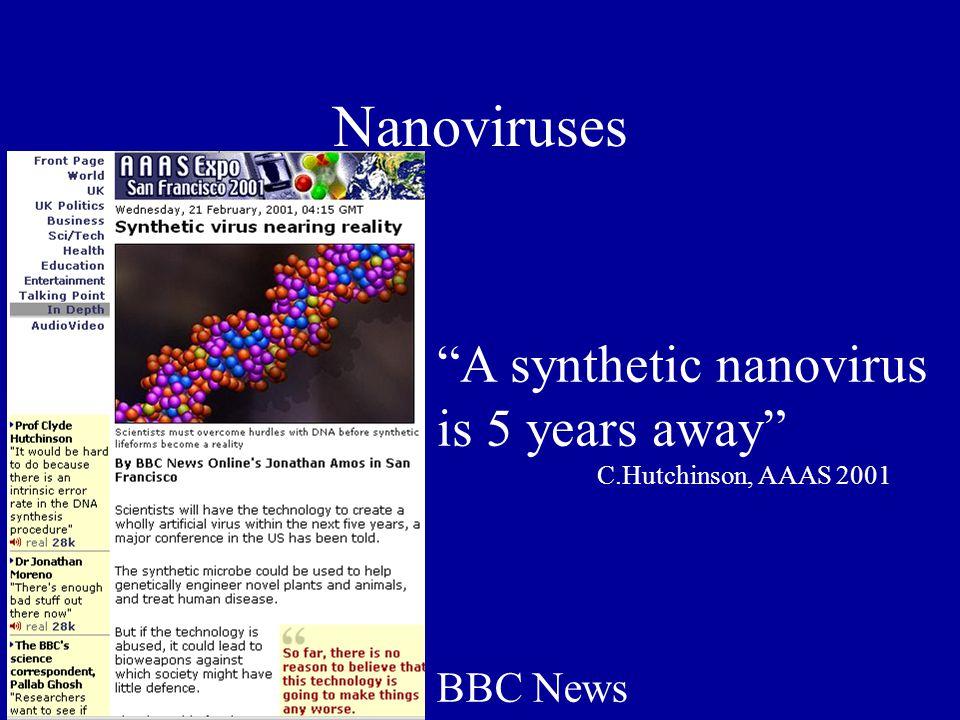 Nanoviruses A synthetic nanovirus is 5 years away C.Hutchinson, AAAS 2001 BBC News