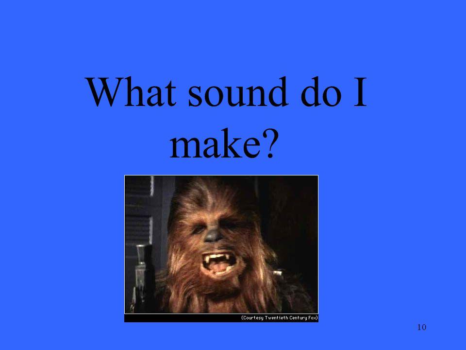 10 What sound do I make