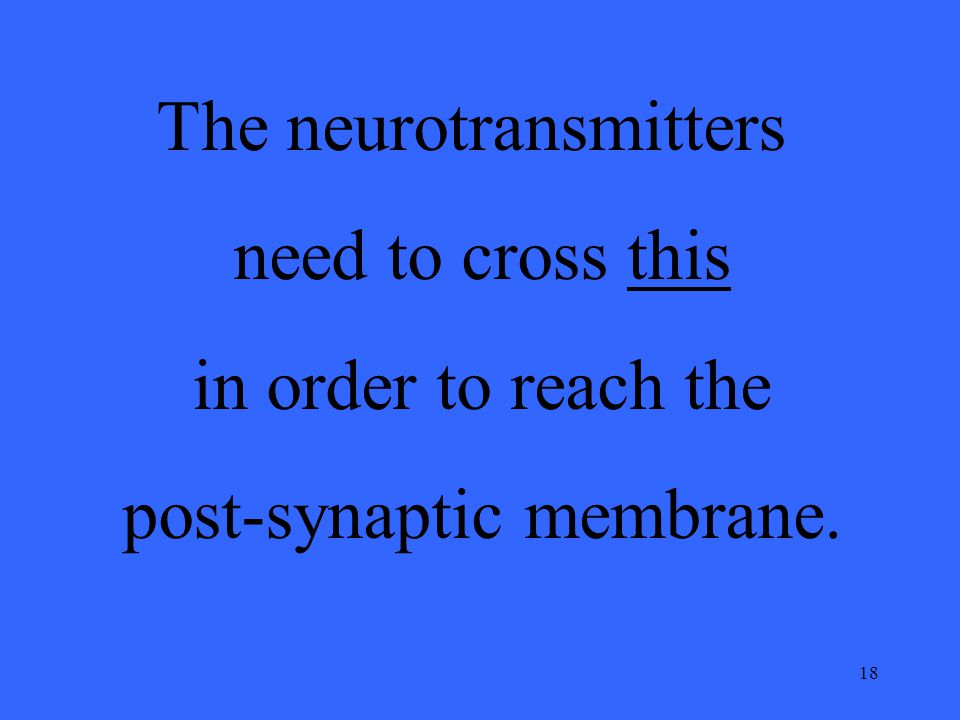 18 The neurotransmitters need to cross this in order to reach the post-synaptic membrane.