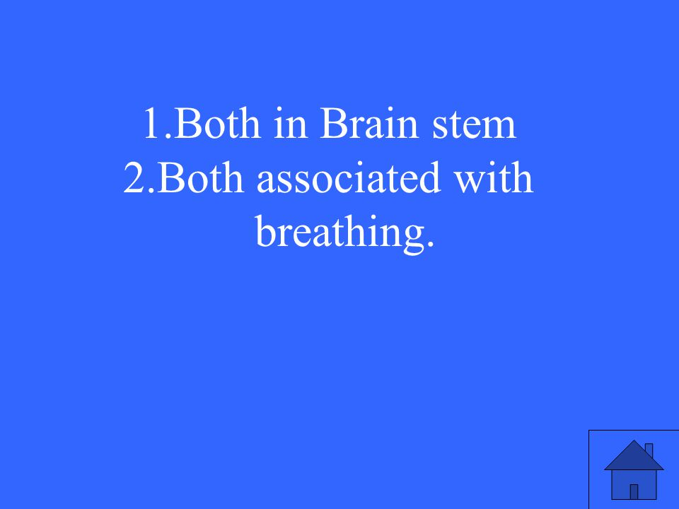 23 1.Both in Brain stem 2.Both associated with breathing.