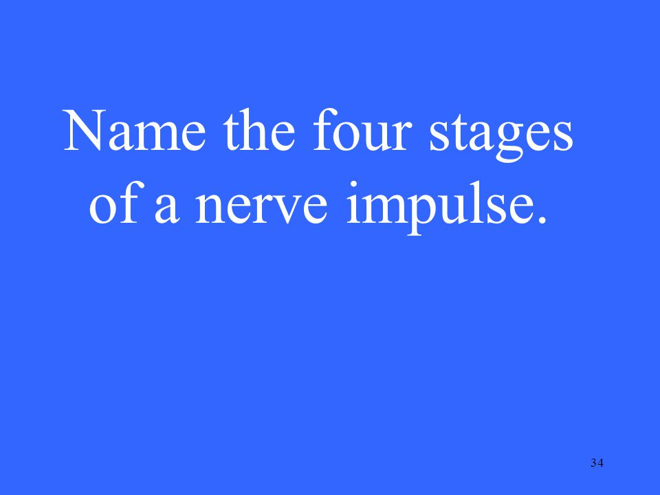 34 Name the four stages of a nerve impulse.