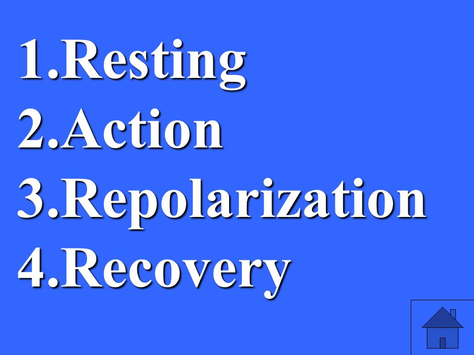 35 1.Resting 2.Action 3.Repolarization 4.Recovery