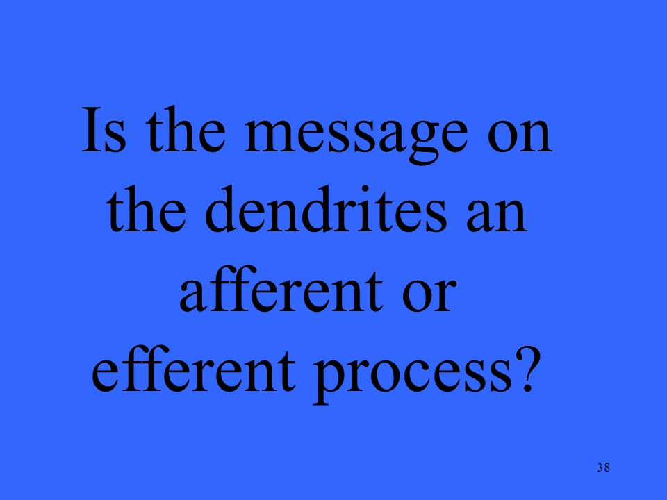 38 Is the message on the dendrites an afferent or efferent process?