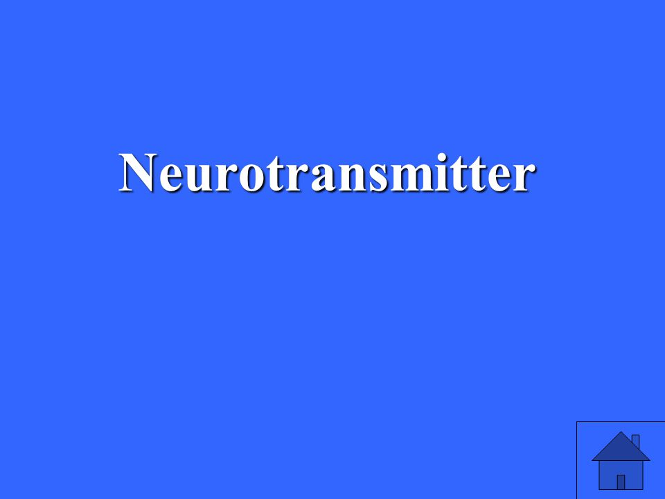 7 Neurotransmitter