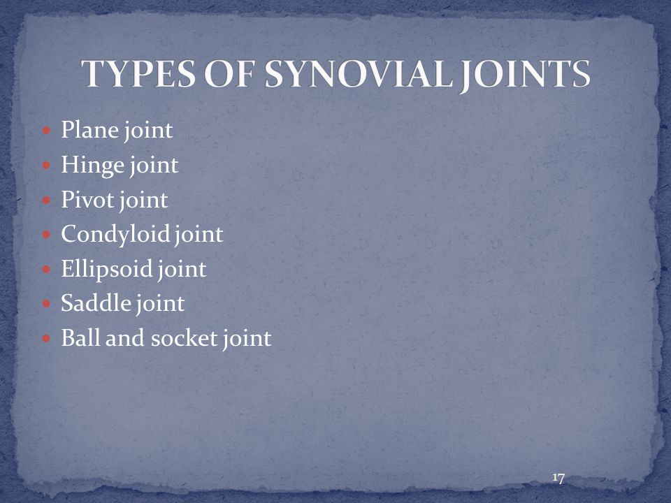 17 Plane joint Hinge joint Pivot joint Condyloid joint Ellipsoid joint Saddle joint Ball and socket joint