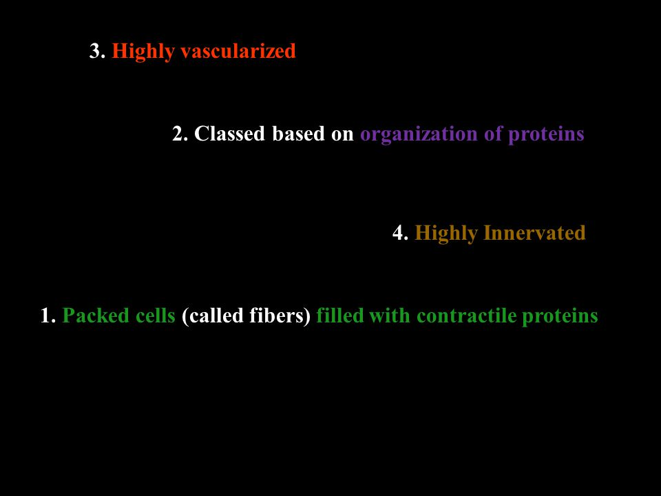 1. Packed cells (called fibers) filled with contractile proteins 2.