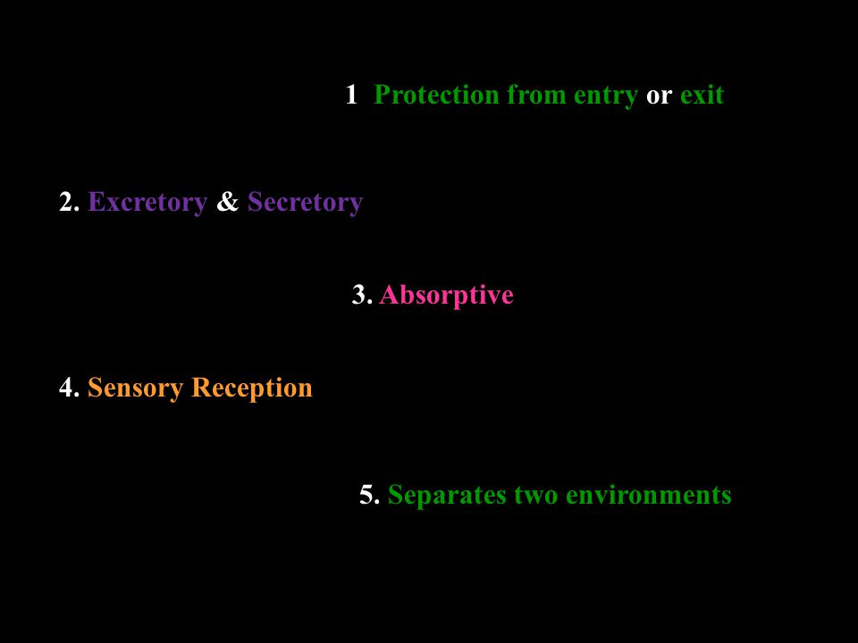 1. Protection from entry or exit 2. Excretory & Secretory 3.