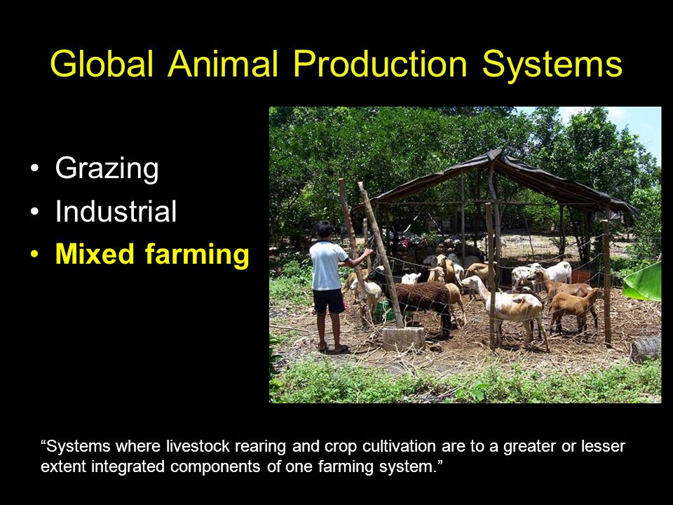 Global Animal Production Systems Grazing Industrial Mixed farming Systems where livestock rearing and crop cultivation are to a greater or lesser extent integrated components of one farming system.