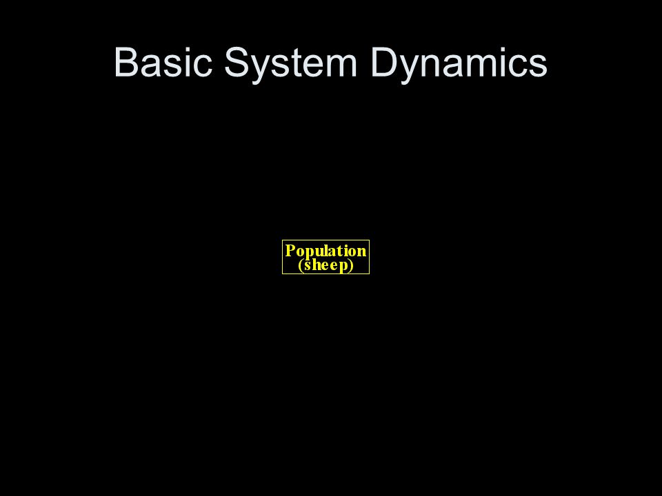 Basic System Dynamics