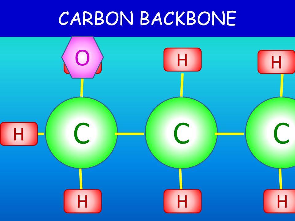 CARBON BACKBONE CC H H H H C H H H O