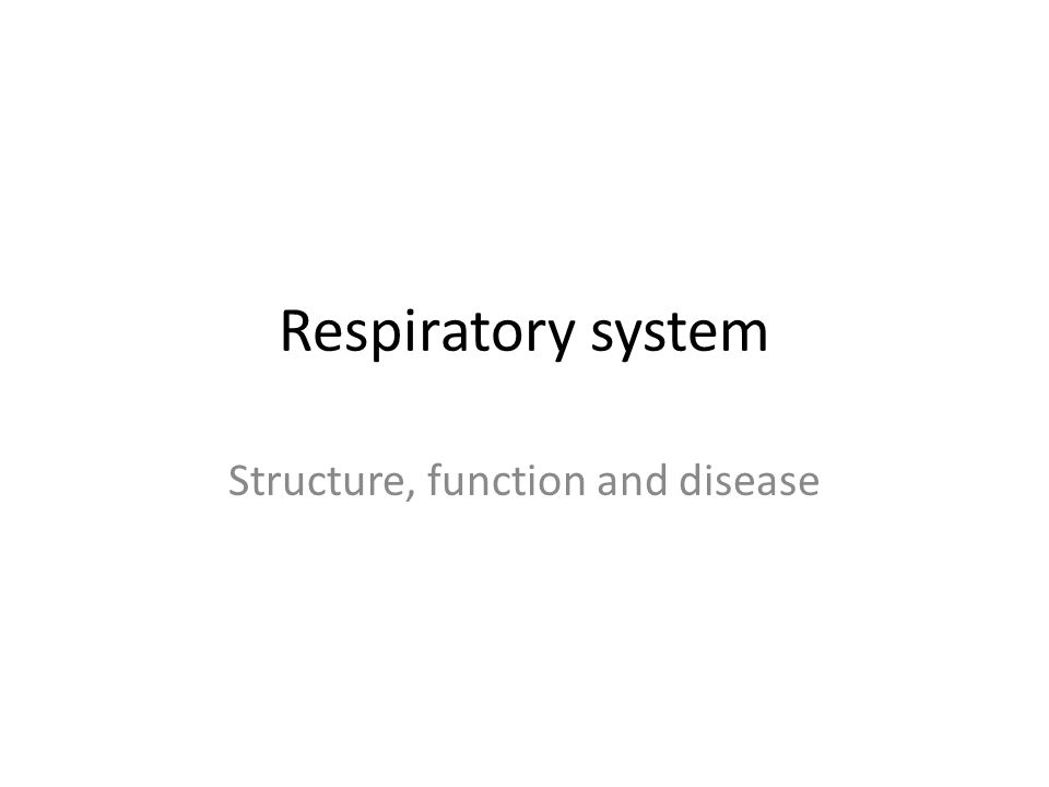 Respiratory system Structure, function and disease