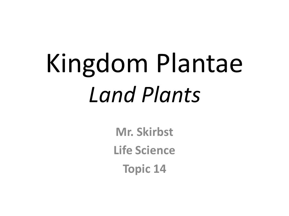 Kingdom Plantae Land Plants Mr. Skirbst Life Science Topic 14