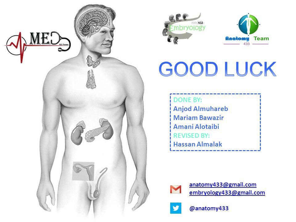 DONE BY: Anjod Almuhareb Mariam Bawazir Amani Alotaibi REVISED BY: Hassan Almalak anatomy433@gmail.com embryology433@gmail.com @anatomy433