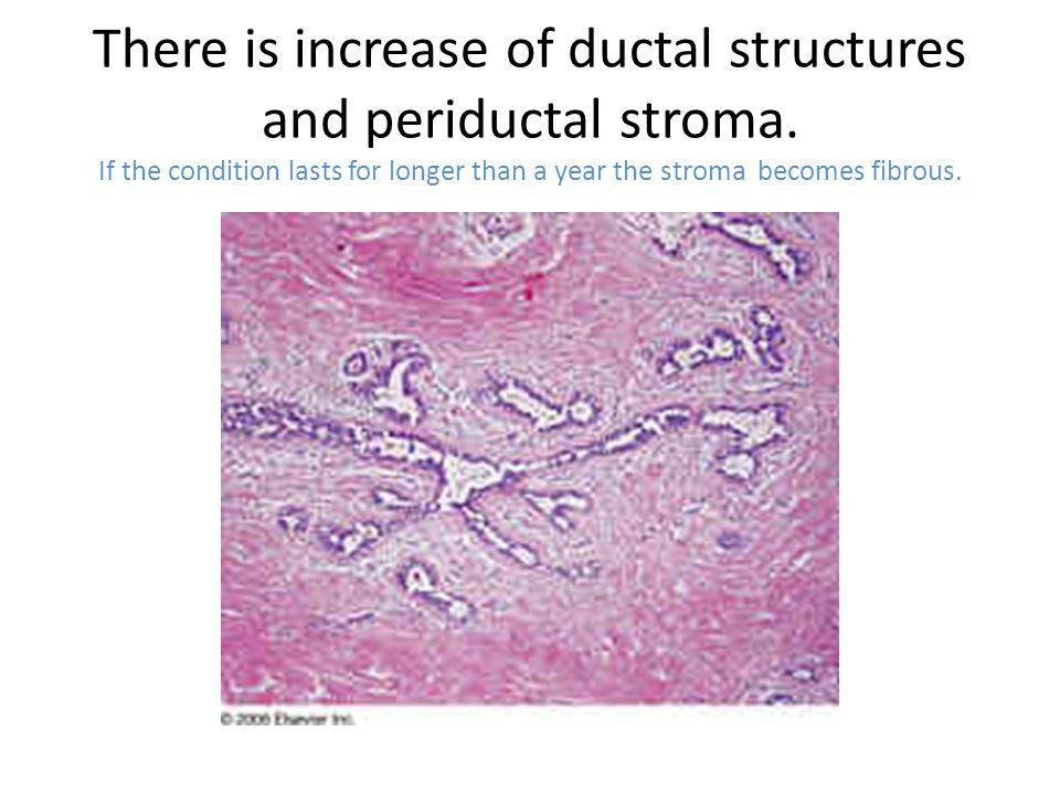 Testicular disorders causing gynecomastia Klinefelter's syndrome Hypogonadism Leydig cell tumor Choriocarcinoma Tumors Mump Leprosy Infections (rarely)