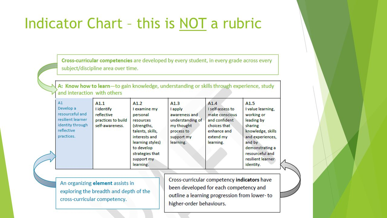 Indicator Chart – this is NOT a rubric