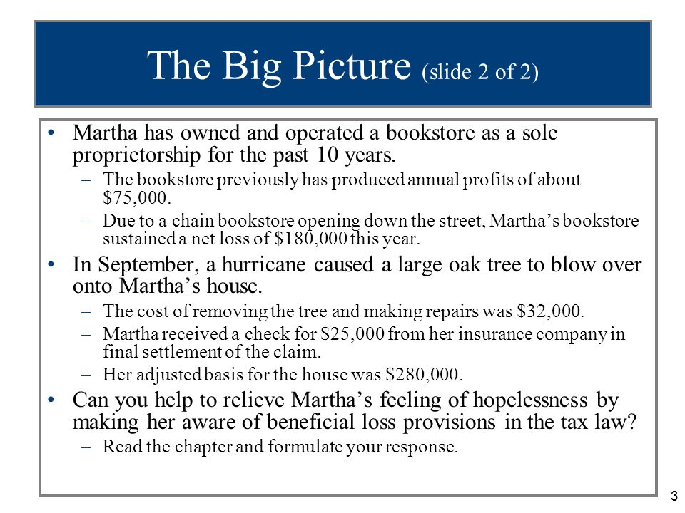 3 The Big Picture (slide 2 of 2) Martha has owned and operated a bookstore as a sole proprietorship for the past 10 years.