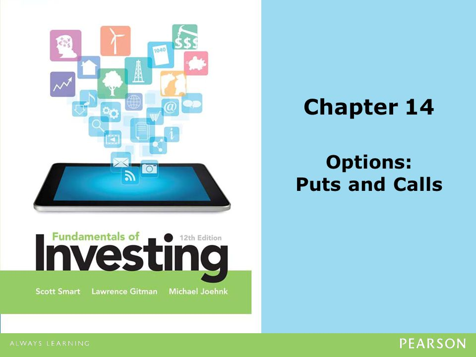 Chapter 14 Options: Puts and Calls