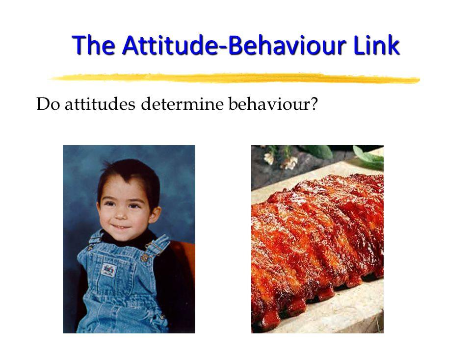 Do attitudes determine behaviour The Attitude-Behaviour Link