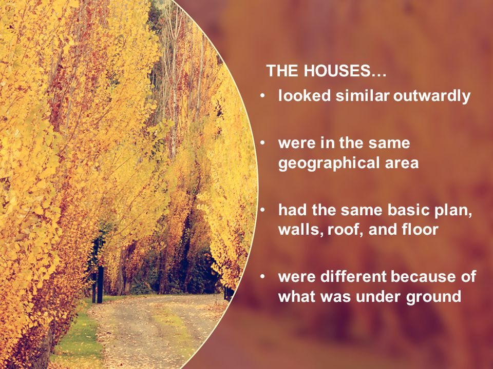 THE HOUSES… looked similar outwardly were in the same geographical area had the same basic plan, walls, roof, and floor were different because of what