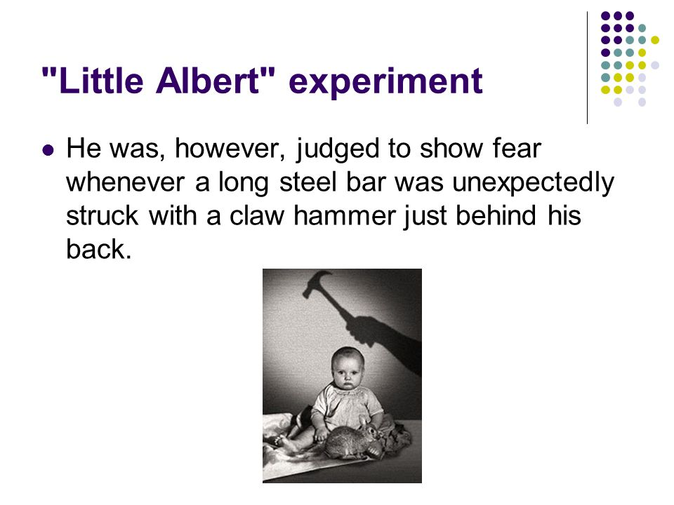 Little Albert experiment He was, however, judged to show fear whenever a long steel bar was unexpectedly struck with a claw hammer just behind his back.