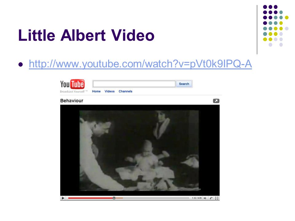 Little Albert Video http://www.youtube.com/watch v=pVt0k9IPQ-A