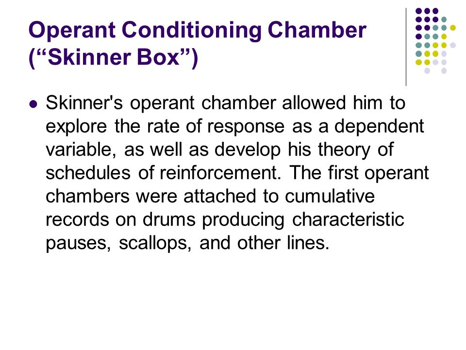 Operant Conditioning Chamber ( Skinner Box ) Skinner s operant chamber allowed him to explore the rate of response as a dependent variable, as well as develop his theory of schedules of reinforcement.