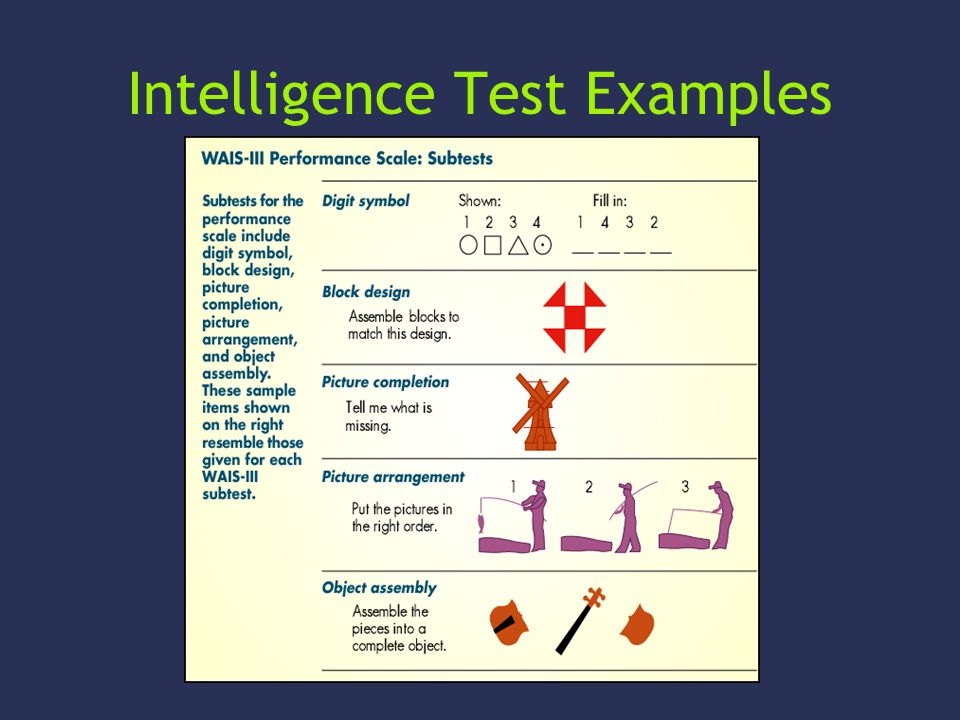 Intelligence Test Examples