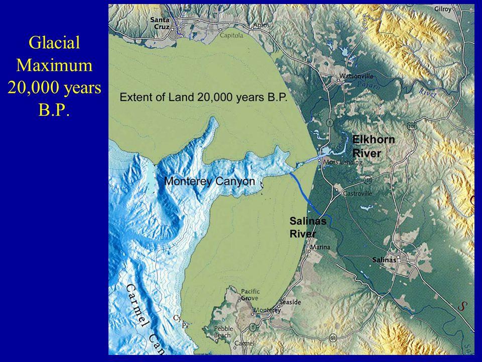 Glacial Maximum 20,000 years B.P.