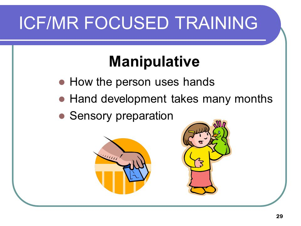 29 ICF/MR FOCUSED TRAINING How the person uses hands Hand development takes many months Sensory preparation Manipulative