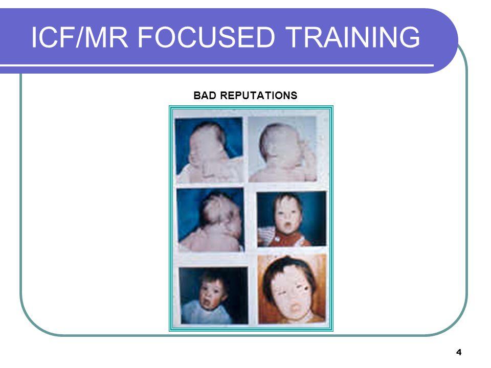 15 ICF/MR FOCUSED TRAINING Eradicating Functional Behavior (Functional Communication)