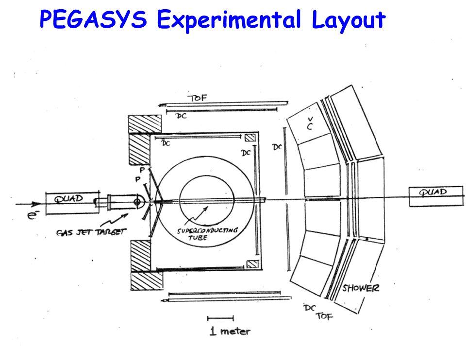 Richard MilnerHERA symposium June 30, 200738 PEGASYS Experimental Layout