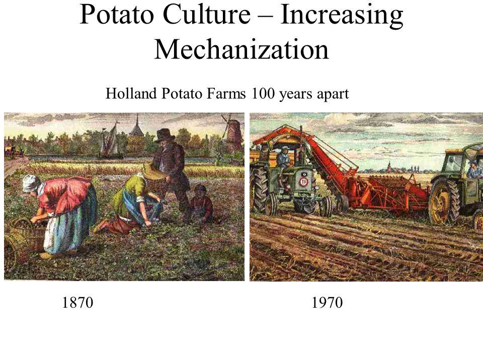Potato Culture – Increasing Mechanization 18701970 Holland Potato Farms 100 years apart