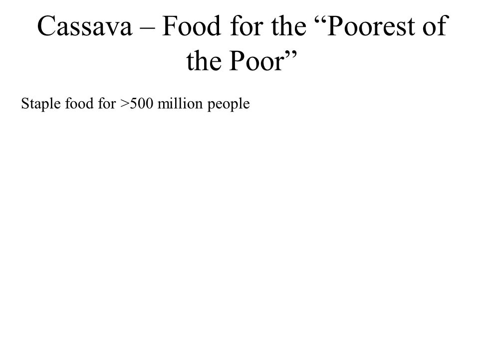 "Cassava – Food for the ""Poorest of the Poor"" Staple food for >500 million people"