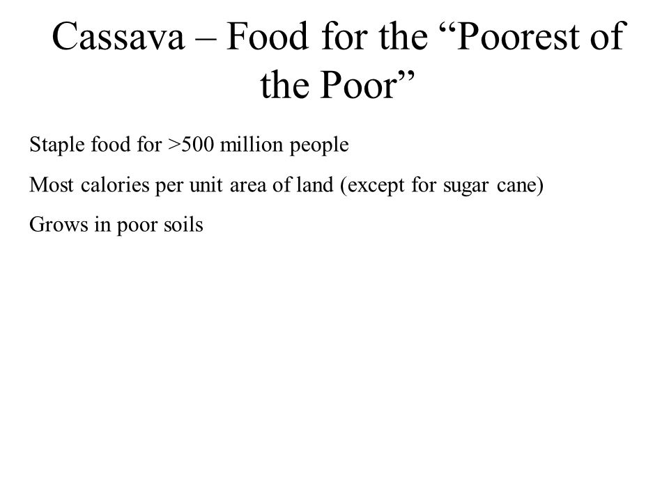 "Cassava – Food for the ""Poorest of the Poor"" Staple food for >500 million people Most calories per unit area of land (except for sugar cane) Grows in"