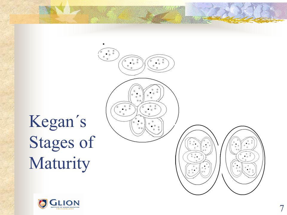7 Kegan´s Stages of Maturity