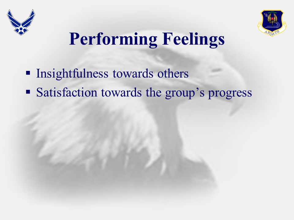 Performing Feelings  Insightfulness towards others  Satisfaction towards the group's progress