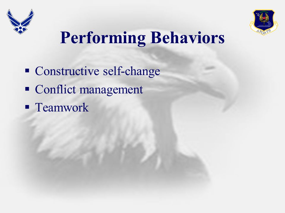 Performing Behaviors  Constructive self-change  Conflict management  Teamwork