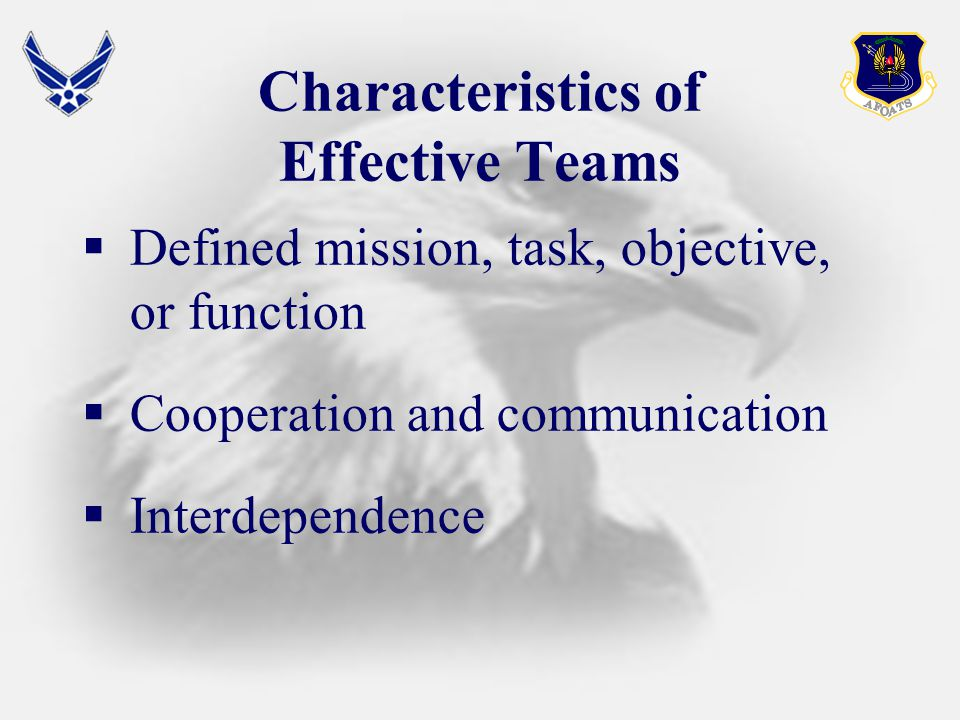 Characteristics of Effective Teams  Defined mission, task, objective, or function  Cooperation and communication  Interdependence