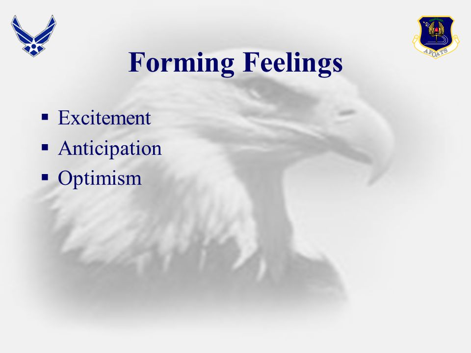 Forming Feelings  Excitement  Anticipation  Optimism