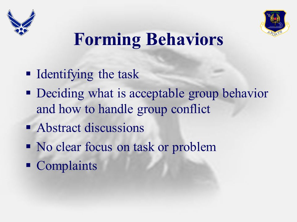 Forming Behaviors  Identifying the task  Deciding what is acceptable group behavior and how to handle group conflict  Abstract discussions  No clear focus on task or problem  Complaints