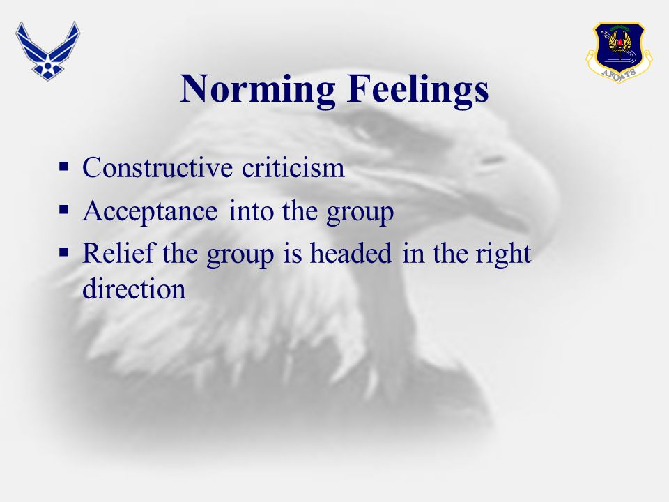 Norming Feelings  Constructive criticism  Acceptance into the group  Relief the group is headed in the right direction