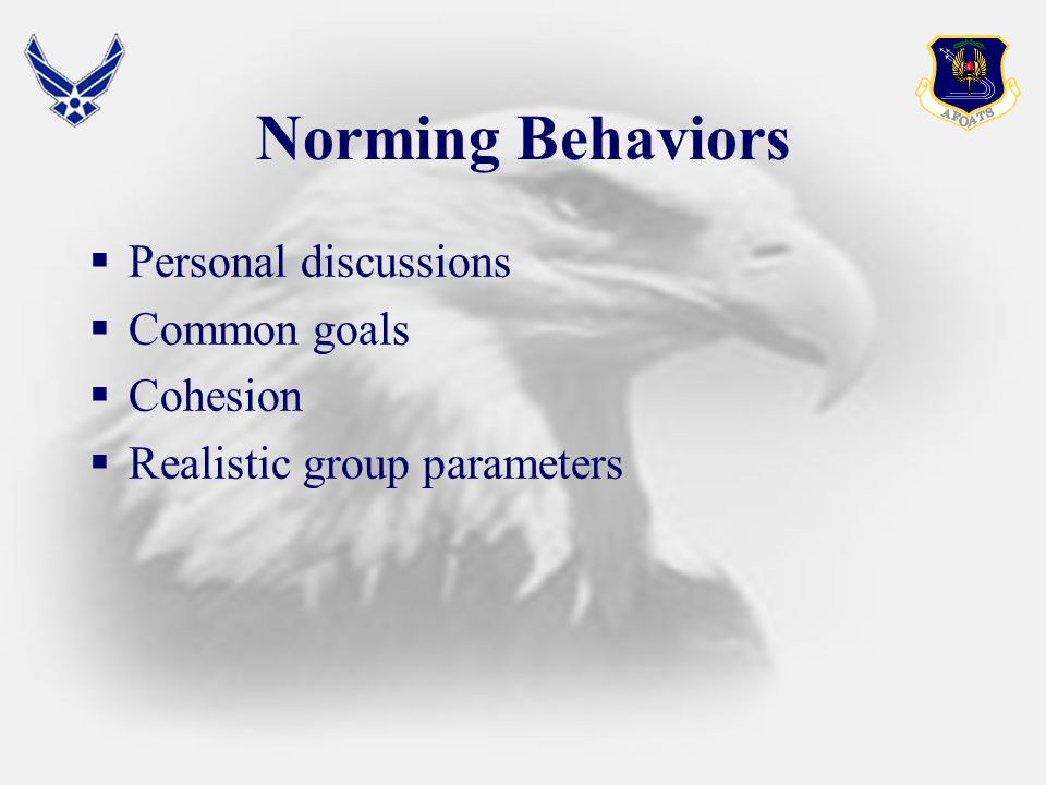 Norming Behaviors  Personal discussions  Common goals  Cohesion  Realistic group parameters