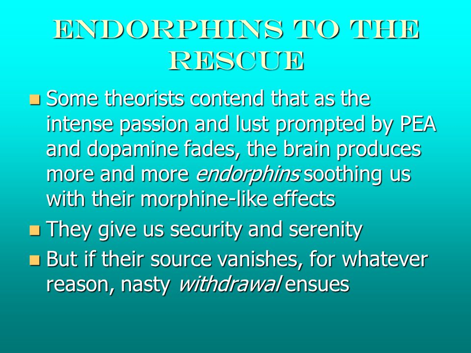 Endorphins to the rescue Some theorists contend that as the intense passion and lust prompted by PEA and dopamine fades, the brain produces more and more endorphins soothing us with their morphine-like effects Some theorists contend that as the intense passion and lust prompted by PEA and dopamine fades, the brain produces more and more endorphins soothing us with their morphine-like effects They give us security and serenity They give us security and serenity But if their source vanishes, for whatever reason, nasty withdrawal ensues But if their source vanishes, for whatever reason, nasty withdrawal ensues