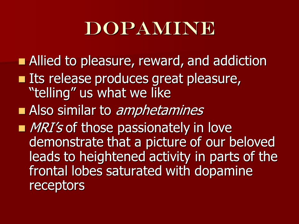 dopamine Allied to pleasure, reward, and addiction Allied to pleasure, reward, and addiction Its release produces great pleasure, telling us what we like Its release produces great pleasure, telling us what we like Also similar to amphetamines Also similar to amphetamines MRI's of those passionately in love demonstrate that a picture of our beloved leads to heightened activity in parts of the frontal lobes saturated with dopamine receptors MRI's of those passionately in love demonstrate that a picture of our beloved leads to heightened activity in parts of the frontal lobes saturated with dopamine receptors