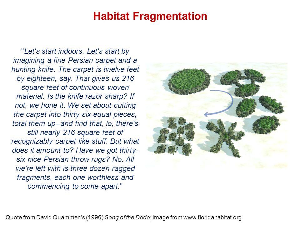 Habitat Fragmentation Quote from David Quammen's (1996) Song of the Dodo; Image from www.floridahabitat.org