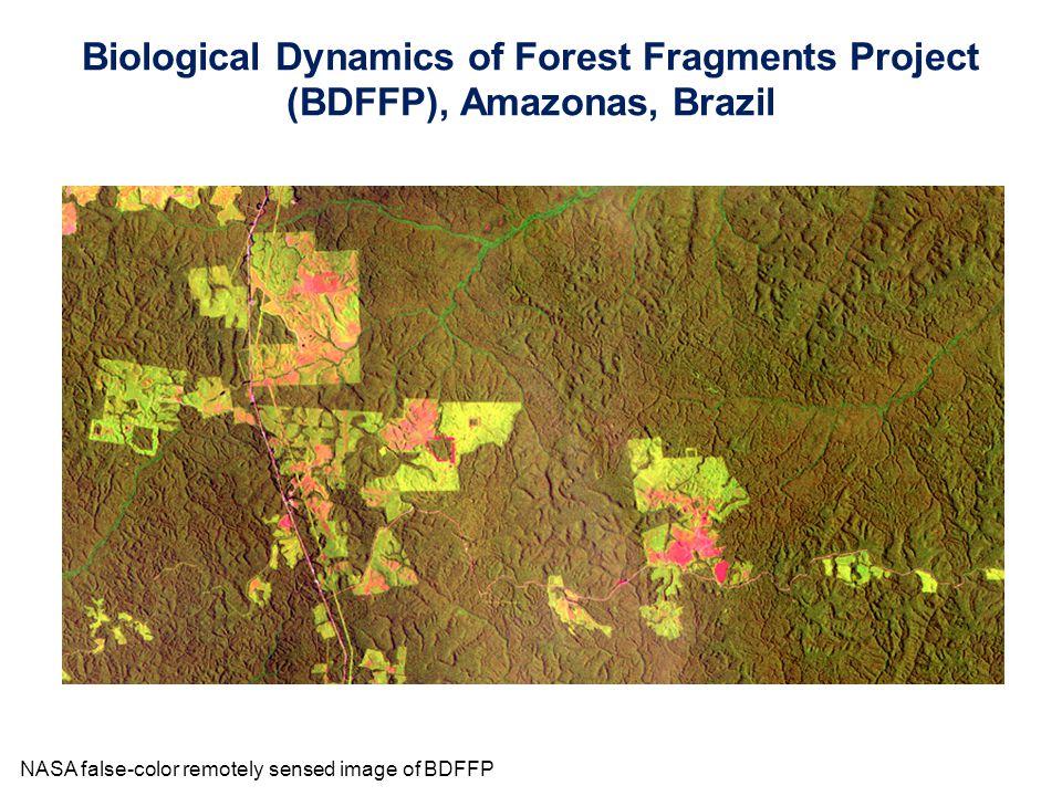 NASA false-color remotely sensed image of BDFFP Biological Dynamics of Forest Fragments Project (BDFFP), Amazonas, Brazil