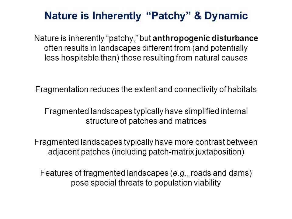 Fragmentation reduces the extent and connectivity of habitats Fragmented landscapes typically have simplified internal structure of patches and matric