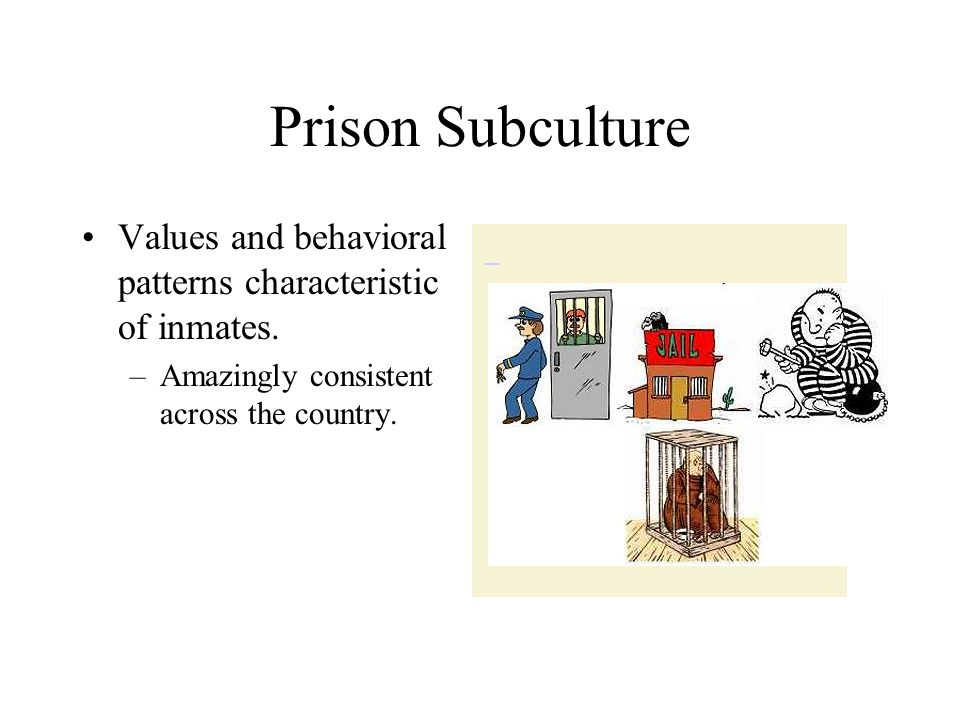 Prison Subculture Values and behavioral patterns characteristic of inmates.