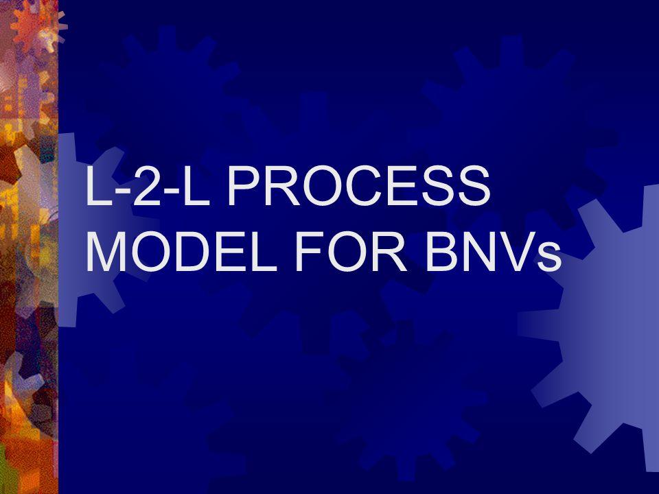 L-2-L PROCESS MODEL FOR BNVs