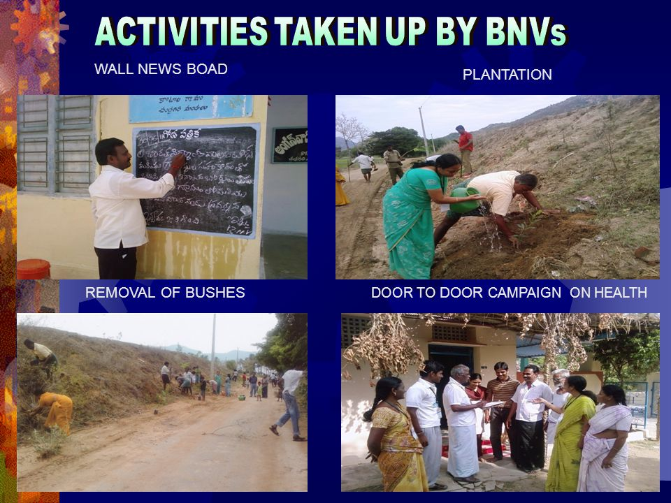 43 REMOVAL OF BUSHES WALL NEWS BOAD DOOR TO DOOR CAMPAIGN ON HEALTH PLANTATION